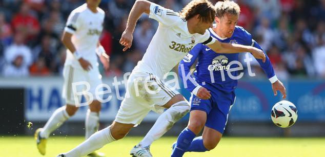 Everton vs swansea betting preview abetting antonym dictionary